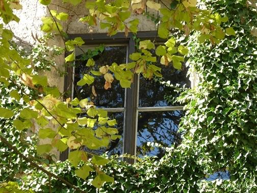 jesienne_okno