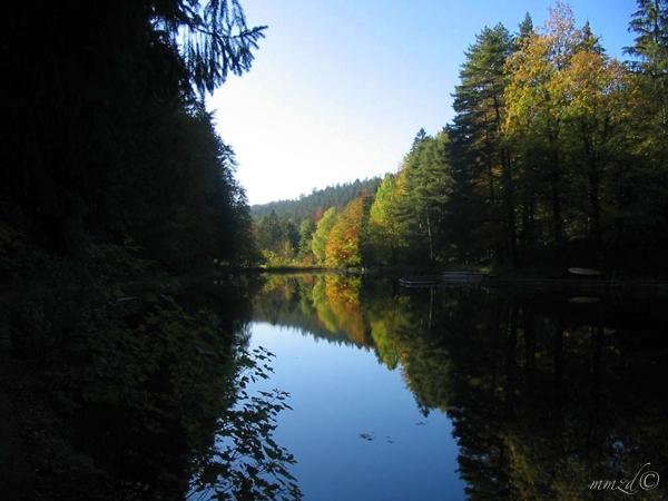Obersee_017